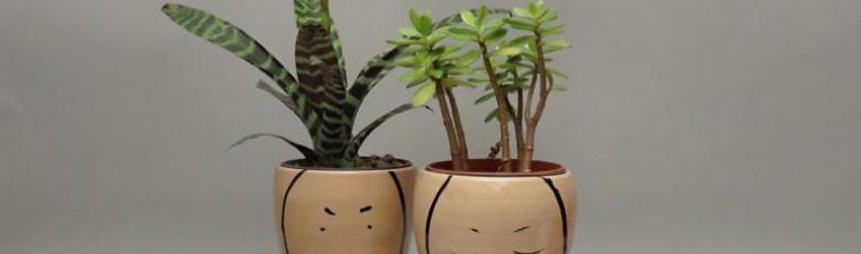 Decorative flower-pots