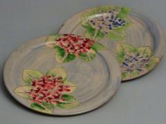 Dinner plate hydrangea